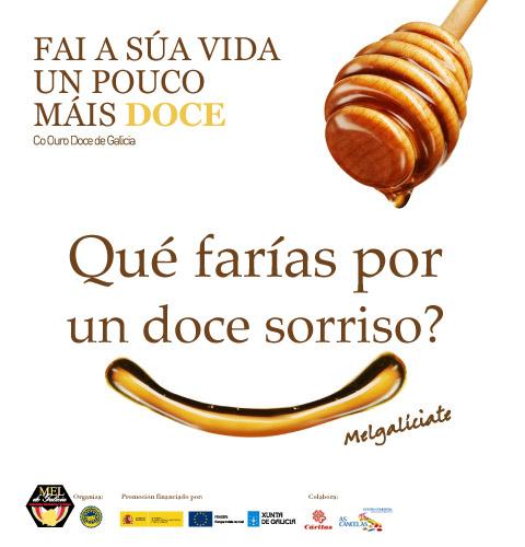Cartel Mel de Galicia Xoguetes 2013