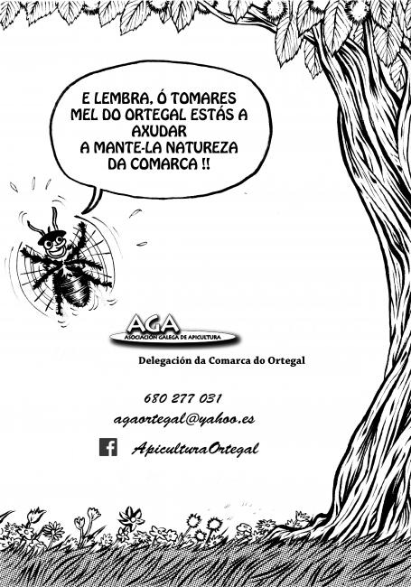 Contraportada comic Feira Mel Ortegal 2013