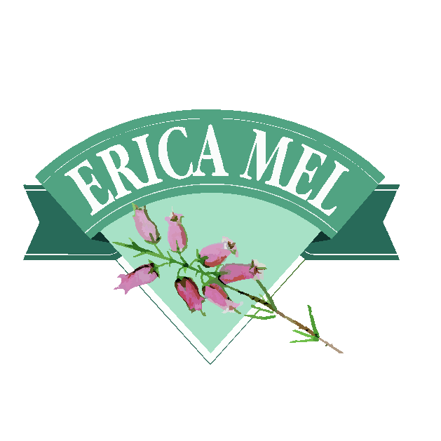 Logo Erica Mel