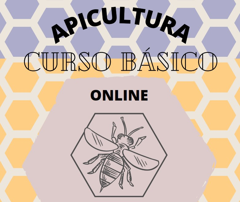 Apicultura básica online 2021