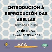 Introdución á Reprodución das Abellas