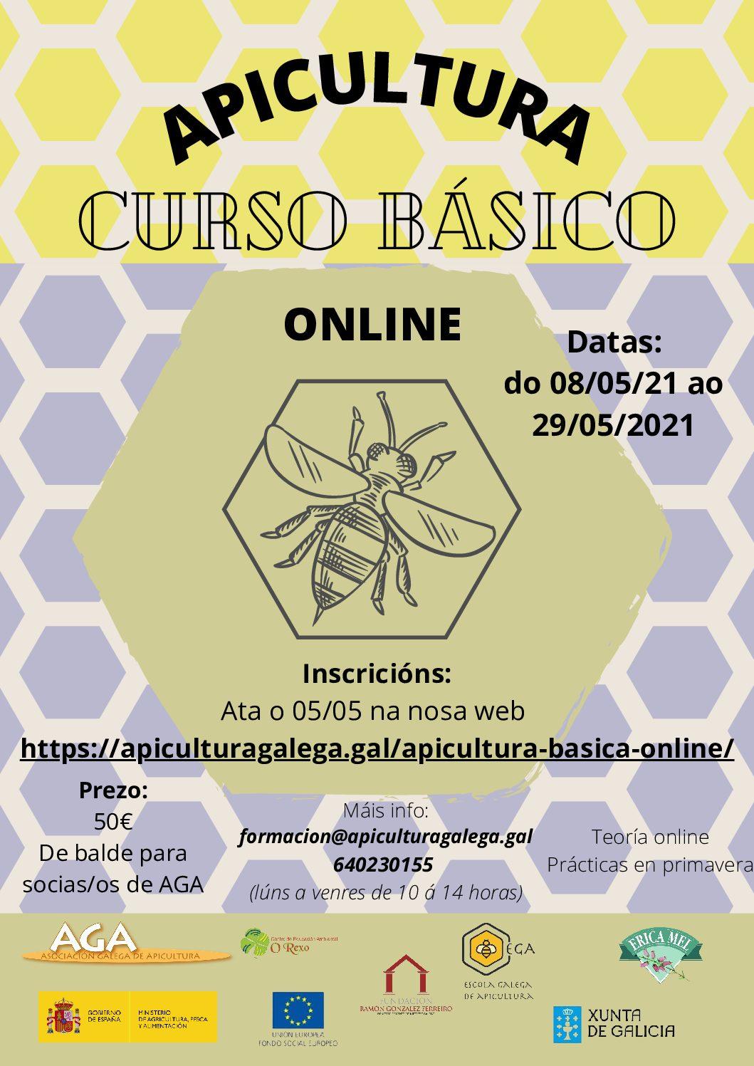 Curso Básico de Apicultura Online Maio